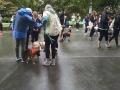 NEDA Walk 2016 bulima awareness